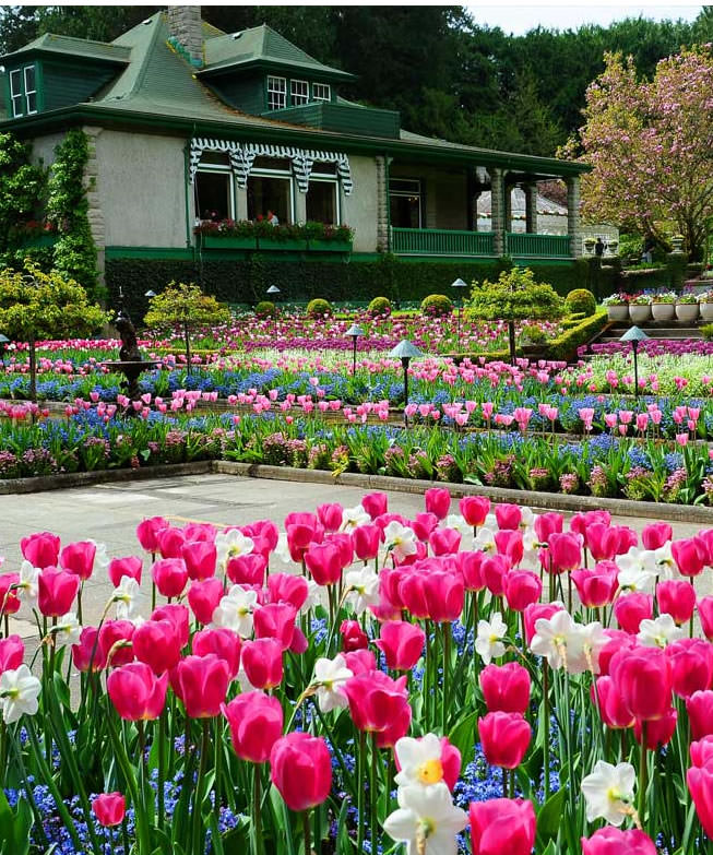 Butchart garden tours victoria bc - Butchart gardens tour from victoria ...